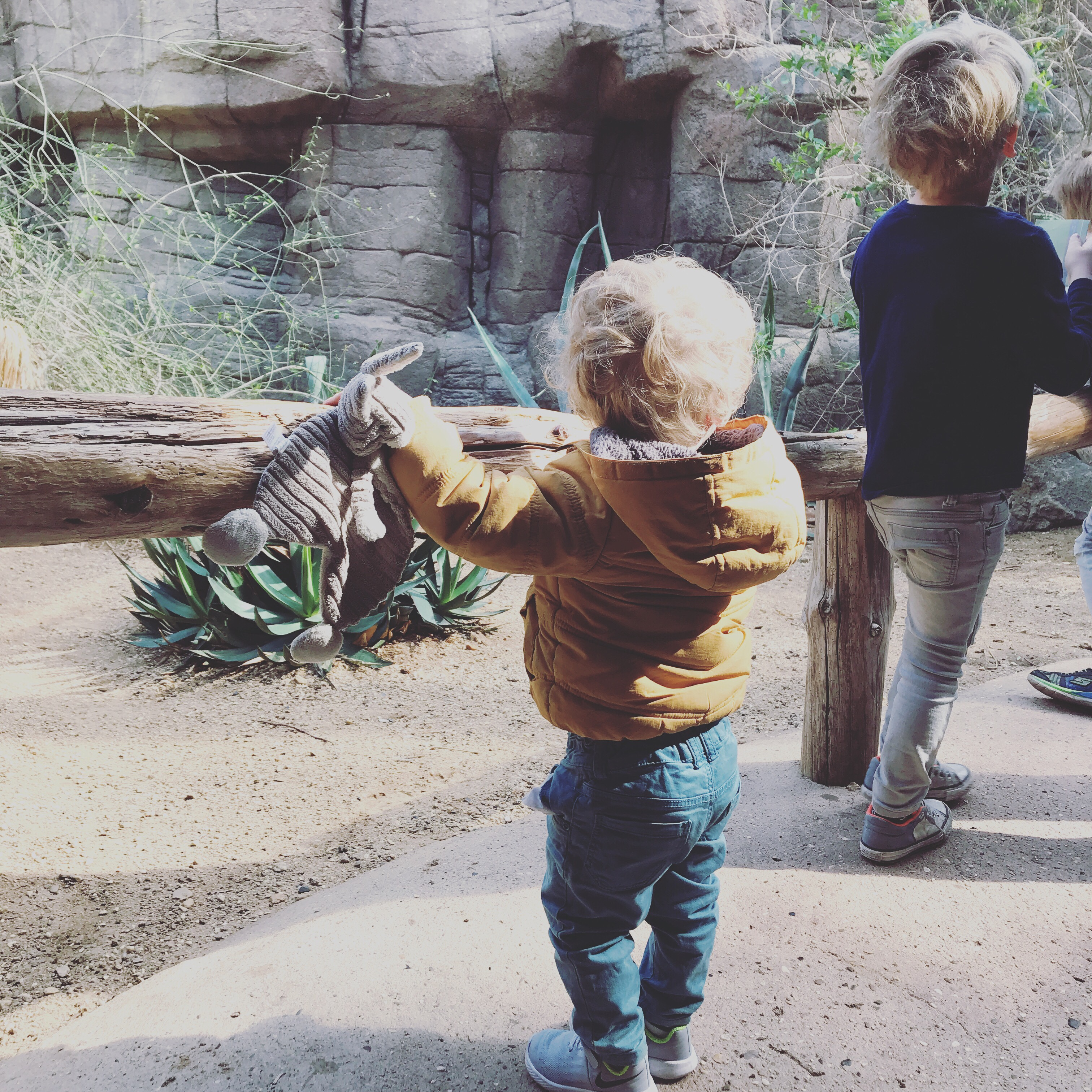 photodiary dierentuin kids kinderen feest verjaardag mama mamablog mamablogger blog blogger lifestyle laviedemama.nl